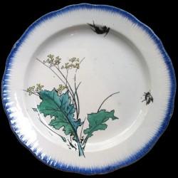 Bracquemond Branche fleurie et insecte