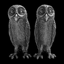 Salt & pepper owl
