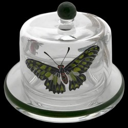 Butter dish 7,5 cm ants and butterflies