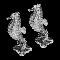 Sel & Poivre Hypocampe