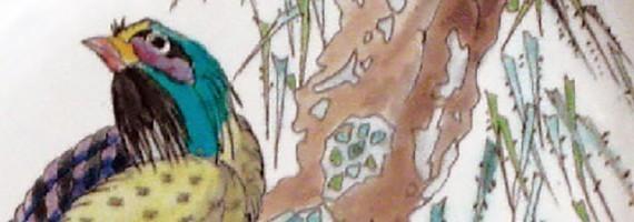 """Great birds"" Vieillard"